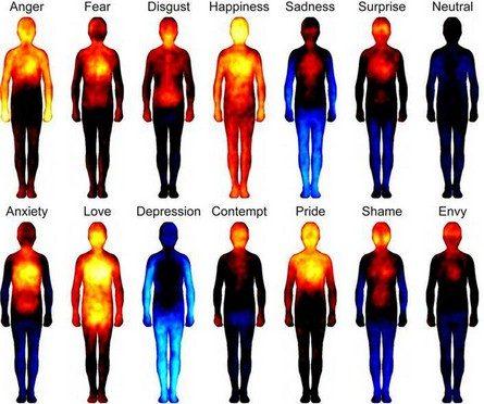 Protetto: Messaggi del Corpo
