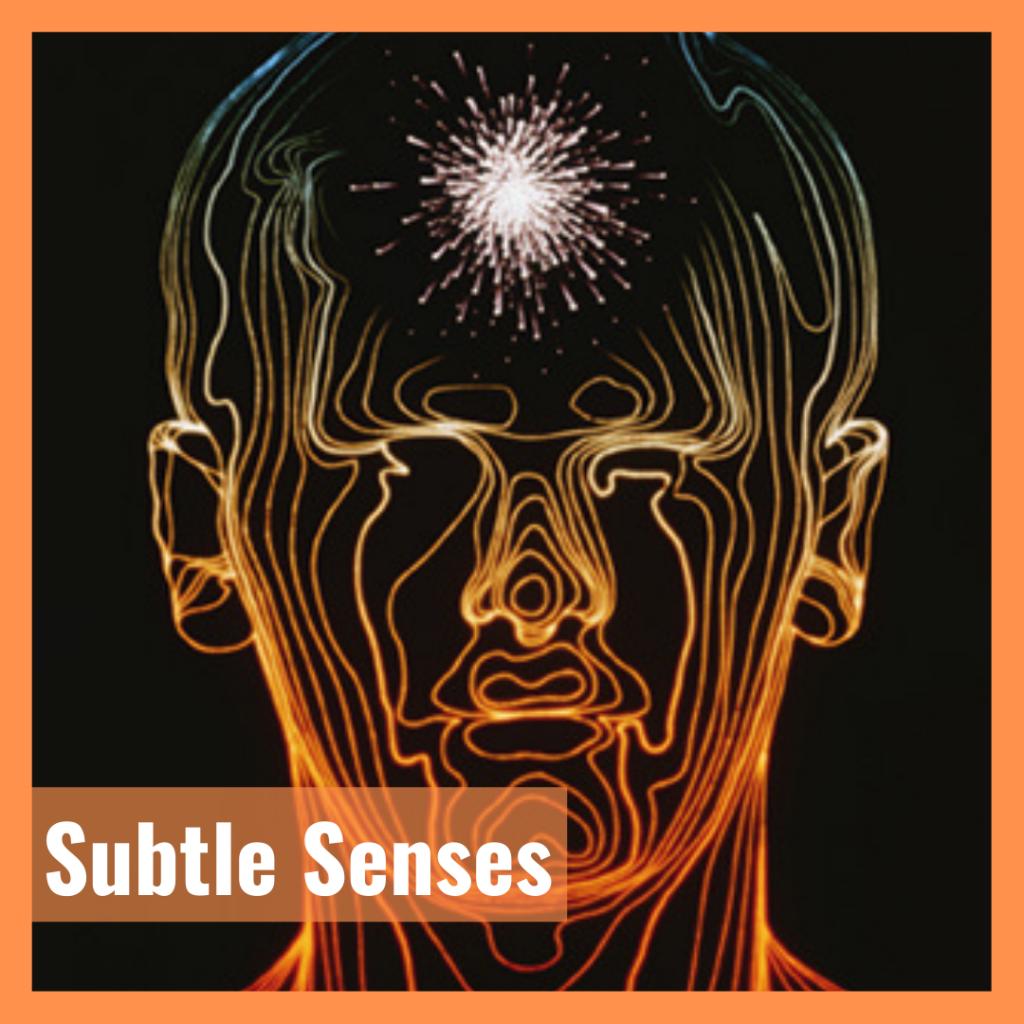 Subtle-Senses